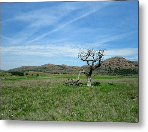 Still Standing Metal Print featuring the photograph Still Standing by Charrie Shockey