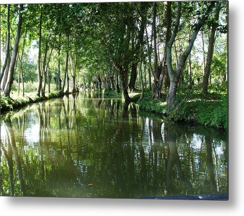 Water Metal Print featuring the photograph Still Waters by Veron Miller