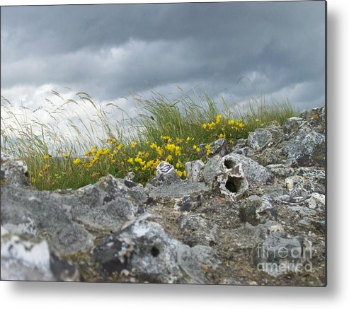 Old Metal Print featuring the photograph Striking Ruins by Mary Mikawoz