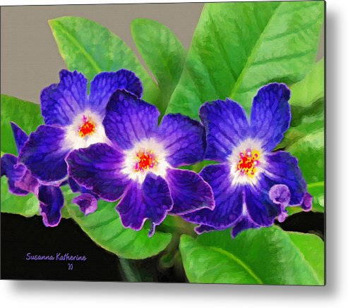Flowers Metal Print featuring the painting Stunning Blue Flowers by Susanna Katherine