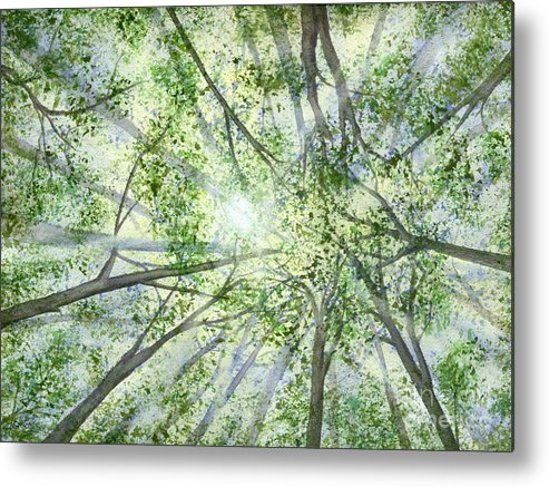Trees Metal Print featuring the painting Summer Rays by Lynn Quinn