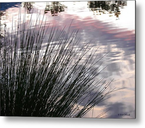 Reeds Metal Print featuring the photograph Summer Sunset by Karl Reid