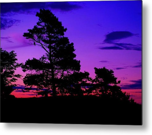 Sunrise Metal Print featuring the photograph Sunrise At Point Pleasant Park by Laura Regier