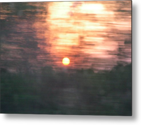 Blur Metal Print featuring the photograph Sunset Through A Pecan Grove by Peter McIntosh