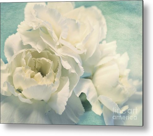 Carnation Metal Print featuring the photograph Tenderly by Priska Wettstein