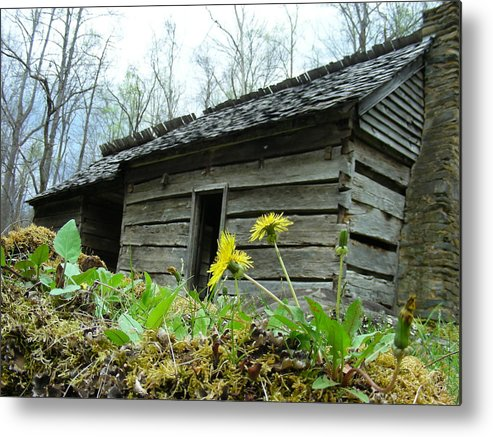 Tennessee Metal Print featuring the photograph Tennessee Homestead by Linda Russell