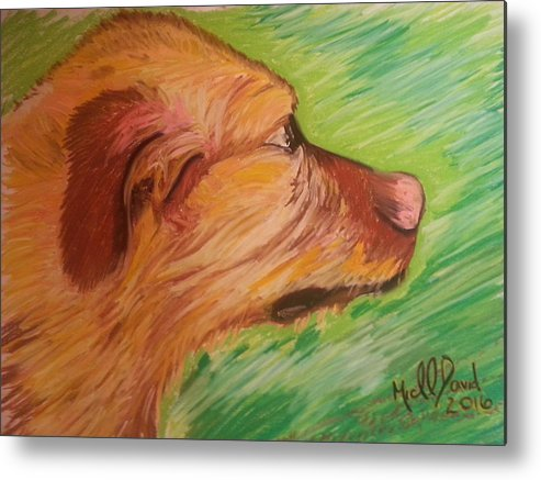 Dog Metal Print featuring the painting The Beachcomber by Michael David