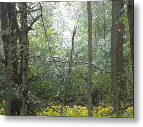 Cross Metal Print featuring the photograph The Cross In The Woods by Diannah Lynch