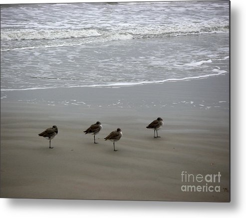 Nature Metal Print featuring the photograph The Gulf In Shades Of Gray - Do Re Mi And Fa by Lucyna A M Green