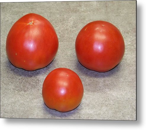 Fruit Metal Print featuring the photograph Three Red Tomatoes by Paula Coley