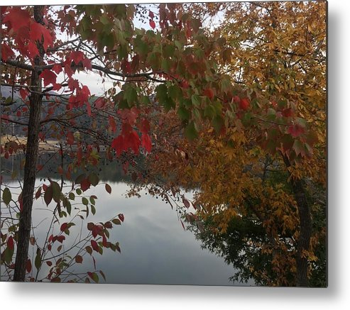 Leaves Metal Print featuring the photograph Through The Leaves by Melissa Howell