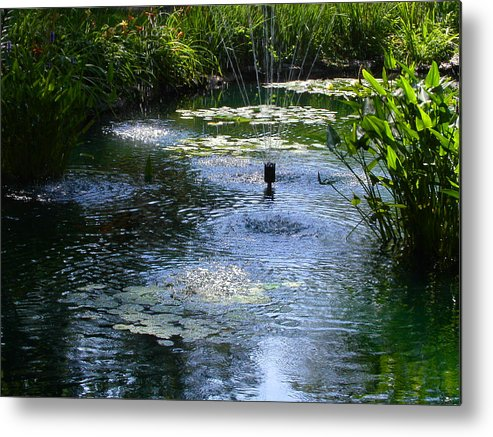 Pond Metal Print featuring the photograph Tranquil Waters by Anne Cameron Cutri