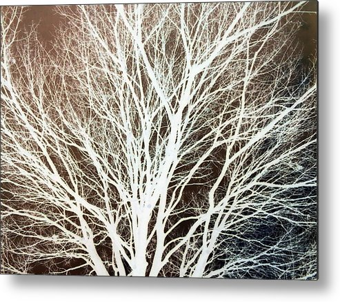 Tree Brown Negative Metal Print featuring the photograph Tree by Cindy New