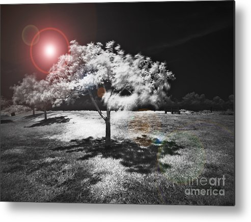 Infrared Metal Print featuring the mixed media Trees With Science Fiction Sky 91774031 by Rolf Bertram