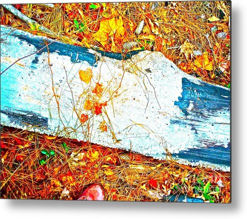 Log Metal Print featuring the photograph Untitled by Chuck Taylor