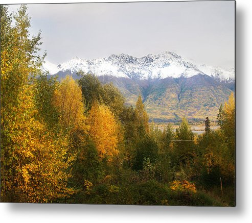 Alaska Metal Print featuring the photograph View From My Studio October 2008 by Dianne Roberson