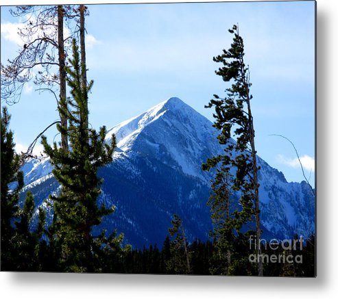 Mountain Metal Print featuring the photograph View From The Top by PJ Cloud