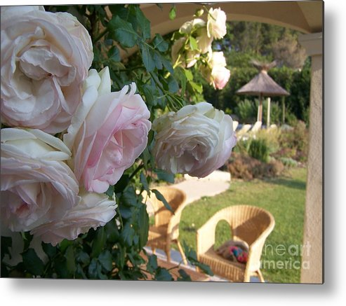 Roses Metal Print featuring the photograph Villa Roses by Nadine Rippelmeyer