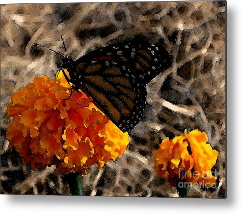 Monarch Metal Print featuring the photograph Watercolor Monarch by PJ Cloud