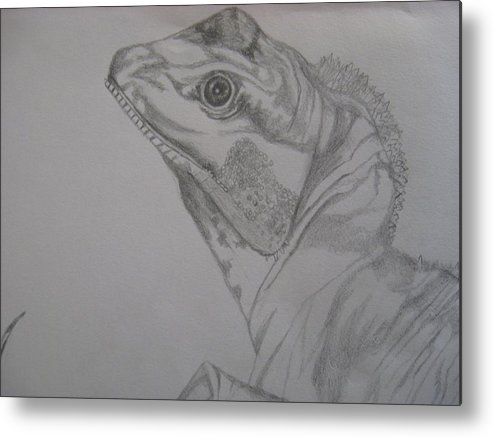 Dragon Metal Print featuring the drawing Waterdragon Up Close by Theodora Dimitrijevic