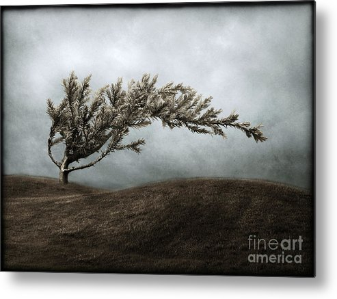 Bend Metal Print featuring the photograph We Break And We Bend And We Turn Ourselves Inside Out by Dana DiPasquale