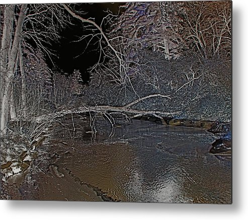 Winter Metal Print featuring the photograph White Night by Peter Gray