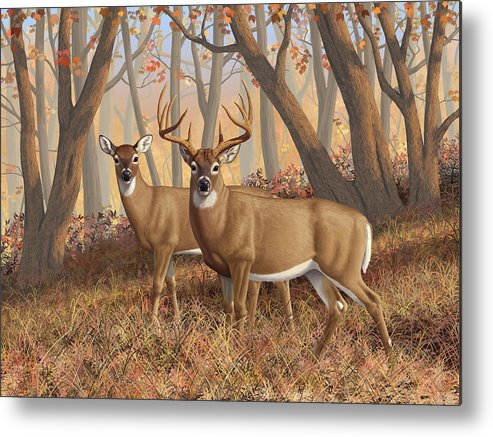 Deers Metal Print featuring the painting Whitetail Deer Painting - Fall Flame by Crista Forest