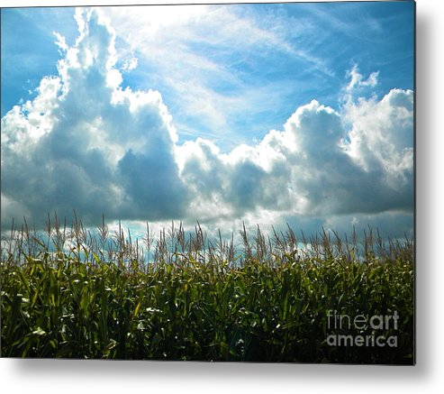 Native American Metal Print featuring the photograph Why I Am Native American by Chuck Taylor
