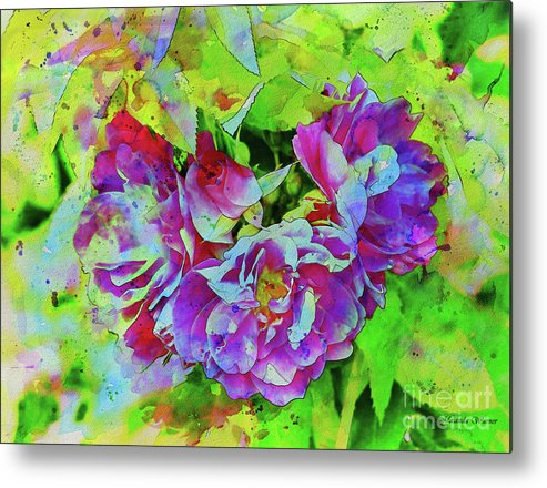 Roses Metal Print featuring the photograph Wild Roses 3 by Malanda Warner