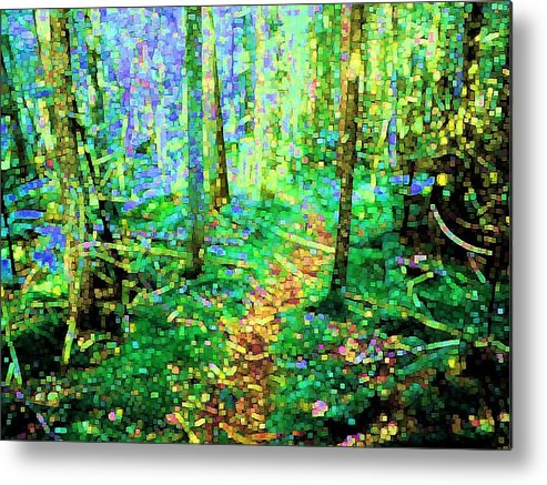 Nature Metal Print featuring the digital art Wooded Trail by Dave Martsolf