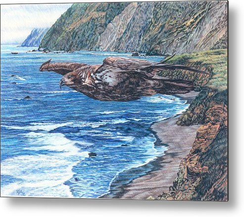 Eagles Metal Print featuring the drawing Youthful Wonder - Where Waters Meet Earth by Rebecca Steelman