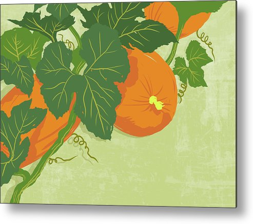 Part Of A Series Metal Print featuring the digital art Graphic Illustration Of Pumpkins by Don Bishop