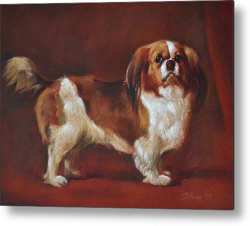 Pastel Metal Print featuring the painting A King Charles Spaniel by Iliyan Bozhanov