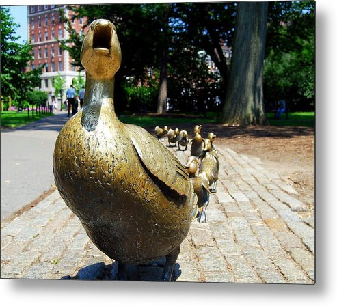 Boston Metal Print featuring the photograph A Walk In The Park I I by Caroline Stella