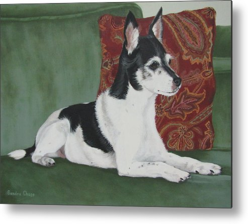 Dog Metal Print featuring the painting Ashley On Her Sofa by Sandra Chase