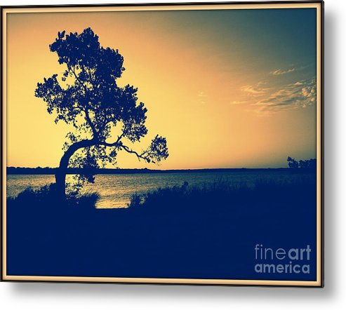 Landscape Metal Print featuring the photograph Golden Sunset by Mickey Harkins