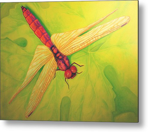 Dragonfly Metal Print featuring the painting Grapeleaf Dragonfly by Liisa Rush