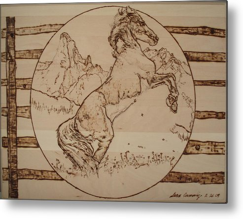 Pyrography Metal Print featuring the pyrography Wild Horse by Sean Connolly