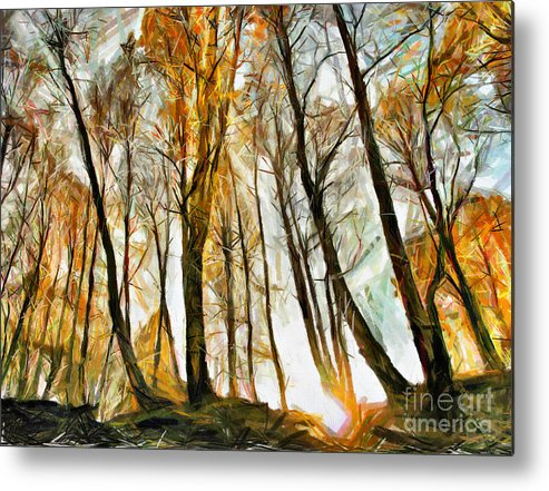 Wood Metal Print featuring the drawing Magical Forest - Drawing by Daliana Pacuraru
