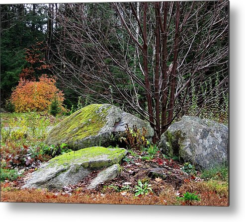 Moss Metal Print featuring the photograph Mossy Rocks Garden by MTBobbins Photography