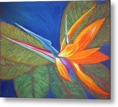 Bird Of Paradise Metal Print featuring the painting Paradise Pastel by Patricia Beebe