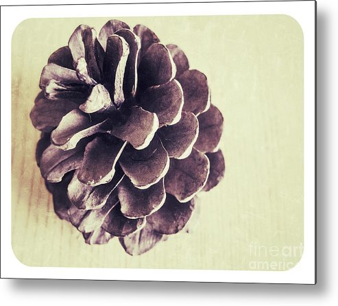 Autumn Metal Print featuring the photograph Pinecone by Steve Outram