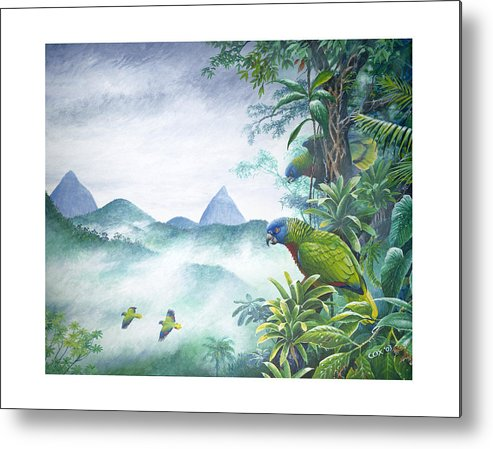 Chris Cox Metal Print featuring the painting Rainforest Realm - St. Lucia Parrots by Christopher Cox