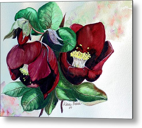 Red Helleborous Painting Flower Painting  Botanical Painting Watercolor Painting Original Painting Floral Painting Flower Painting Red Painting  Greeting Painting Metal Print featuring the painting Red Helleborous by Karin Dawn Kelshall- Best
