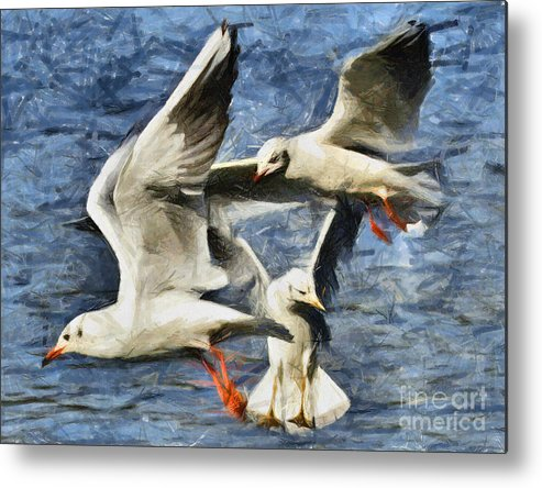 Seagulls Metal Print featuring the pastel Seagulls In Flight - Drawing by Daliana Pacuraru