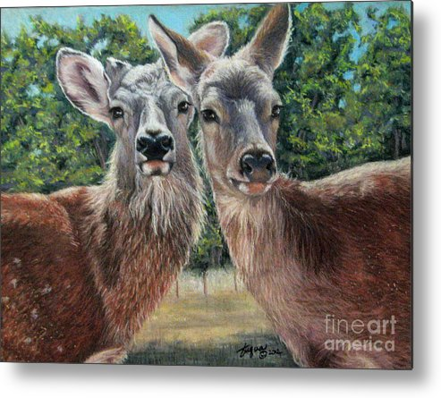 Deer Metal Print featuring the drawing She Nose My Hart by Beverly Fuqua