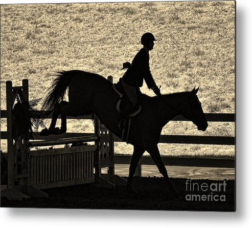 Horse Metal Print featuring the photograph Taking The Fence by Susan Jones