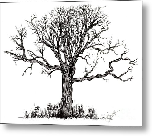 Tree Metal Print featuring the drawing Uprooted by Danielle Scott