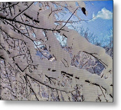 Winter Metal Print featuring the photograph Winter Through Screen by Rob Michels
