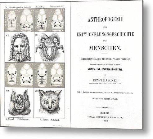 Book Metal Print featuring the photograph 1874 Frontis Haeckel Anthropogenie by Paul D Stewart